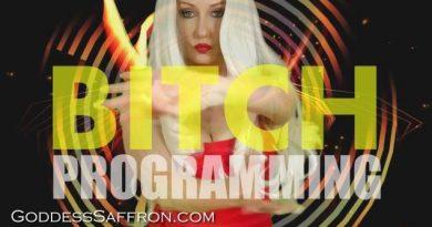 bitch programming