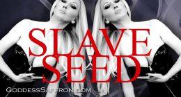 Slave Seed